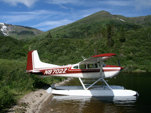 1975 Cessna 185F Skywagon for sale