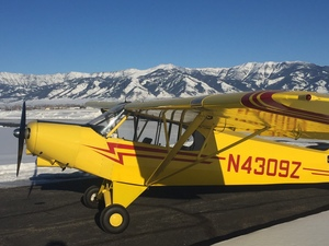 Piper PA-18-150 For Sale